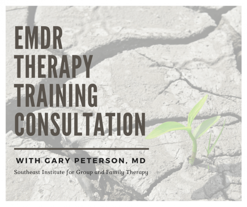 EMDR Therapy Training Consultation