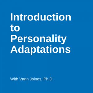 Personality Adaptations Video